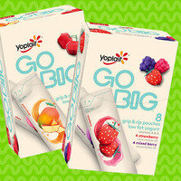 Yoplait Go Big Grip & Rip Pouches Low Fat Yogurt