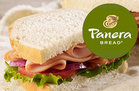Panera Bread Survival Guide