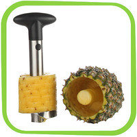 Hungry Girl's 1-Click Wonder: Super Z Outlet Pineapple Slicer