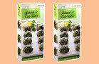 Spinach & Kale Bites