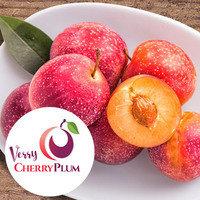 Verry Cherry Plum