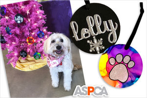 Gift Find of the Day: Personalized Pet Ornaments That Support Animal Charity!